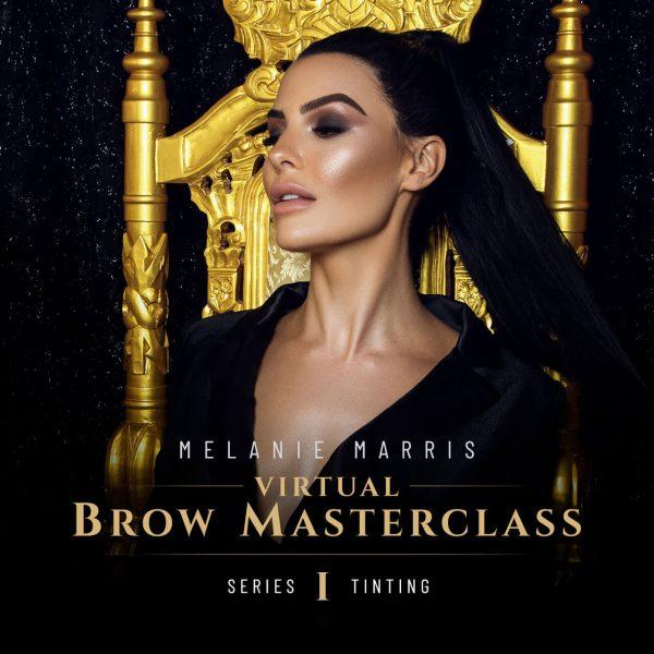 Melanie Marris Virtual Brow Masterclass Series 1 - Tinting